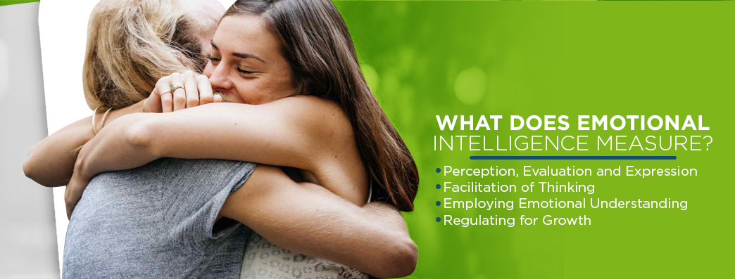 What Emotional Intelligence Measures
