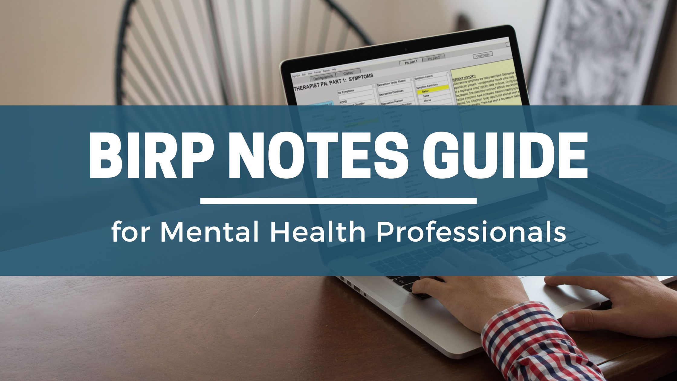 BIRP Notes Guide